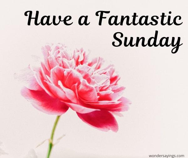 amazing-Sunday-pic