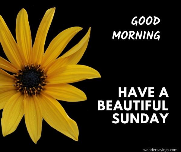 good-morning-Sunday-pic
