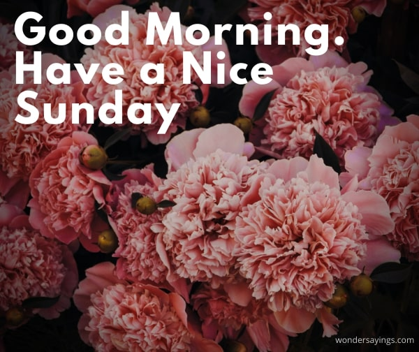 good-morning-Sunday-images