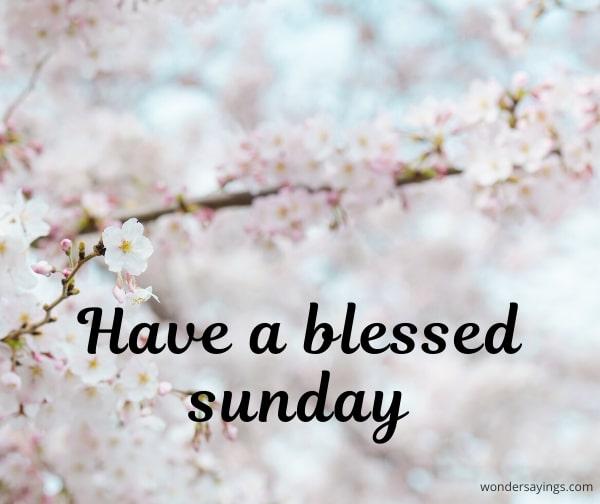 Sunday-flowers-images
